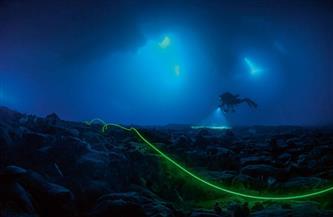 12 نوعًا جديدًا من المخلوقات البحرية.. اكتشاف مذهل داخل أعماق البحار