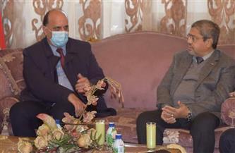 إبراهيم العربي يستقبل سفير تونس لبحث سبل زيادة العلاقات الاقتصادية  صور