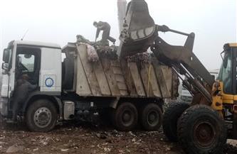 نقل 650 طن قمامة من مصنع تدوير المحلة الكبرى إلى المدفن الصحى | صور