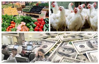 أهم أخبار الاقتصاد | مصر بين أكبر 10 اقتصادات.. وارتفاع البورصة والدولار.. واستقرار أسعار الدواجن والخضراوات