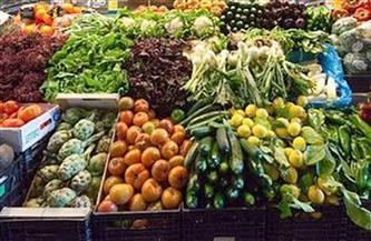 انخفاض أسعار الخضراوات واستقرار الفاكهة الأحد 28 فبراير 2021