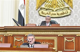 """""""النواب"""" يغلق باب المناقشة حول بيان وزير قطاع الأعمال"""