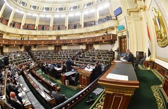 بدء الجلسة العامة لمجلس النواب للاستماع لبياني وزيري المالية والتضامن