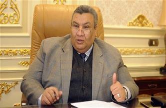 وكيل خطة النواب يطالب بإلغاء وزارة قطاع الأعمال العام