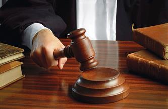 استئناف إعادة محاكمة متهم في قضية «خلية ميكروباص حلوان» غدًا