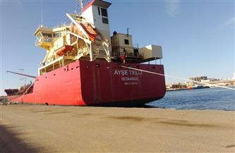 تداول 29 سفينة وتفريغ 6000 طن رخام وشحن 5000 طن صودا بموانئ بورسعيد | صور
