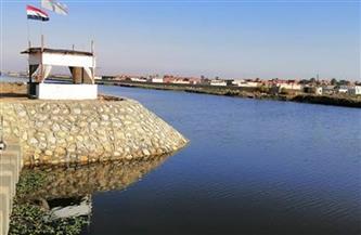 ٢٥ مليون جنيه مساهمة البيئة لخفض الصرف الصناعي على بحيرة المنزلة