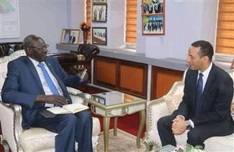سفير مصر في جوبا يلتقي بوزير الإعلام والاتصالات الجنوب سوداني |صور