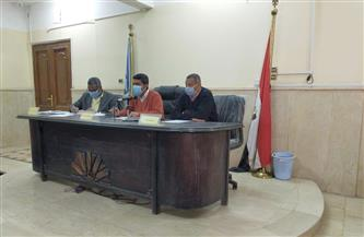 المجلس التنفيذي يناقش توسعة طريق المسار السياحي بمدينة البياضية جنوب الأقصر | صور