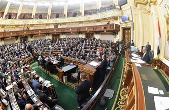 البرلمان يحيل بيان وزير الري إلى اللجان النوعية المتخصصة