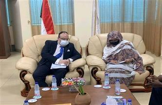 سفير مصر بالخرطوم يلتقي وزيرة التعليم العالي السودانية| صور