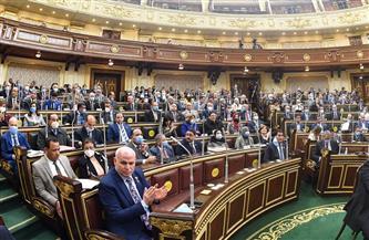 خارجية النواب: السياسة الخارجية لمصر حكيمة ورشيدة.. ودور الوزارة لا ينكره إلا جاحد