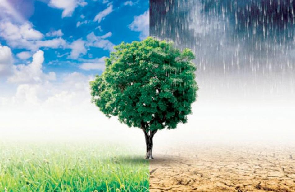 المنظمة العالمية للطقس تعلن ارتفاع معدلات الكوارث المرتبطة بالمناخ  أضعاف