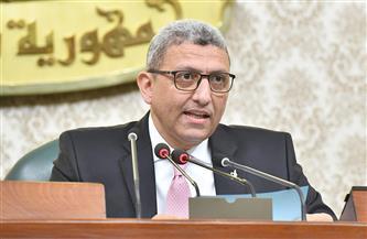 رئيس لجنة القوى العاملة بالنواب يطالب بكشف مصير عمال الحديد والصلب
