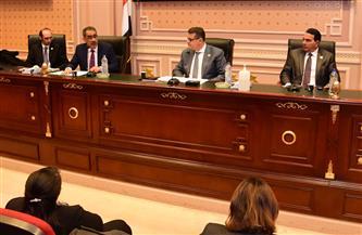 رئيس حقوق الإنسان بالنواب: هيئة الاستعلامات عليها دور كبير في مواجهة ما يثار ضد مصر
