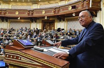 سامح شكري يرحب بتعديل قانون السلك الدبلوماسي والقنصلي لمد سن التقاعد للسفراء