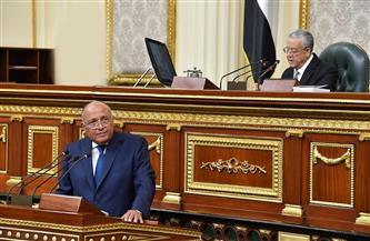 وزير الخارجية: مصر تلتزم بالمبادئ العالمية لحقوق الإنسان.. ونؤكد ضرورة احترام الأديان