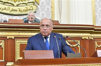 شكري عن مفاوضات سد النهضة: سياسة الأمر الواقع لا تفرض على مصر.. وقادرون على حماية مصالحنا