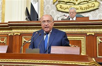وزير الخارجية يشيد بدور القوات المسلحة في إزالة الألغام من الصحراء الغربية