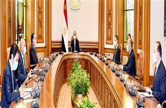 الرئيس السيسي: حجم المشروعات القومية العملاقة في مصر أصبح يمثل فرصة كبيرة وسوقًا واعدةً