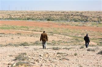 مركز التنمية المستدامة بمطروح: متابعات ميدانية لاختيار الوديان التى سيتم استصلاحها | صور