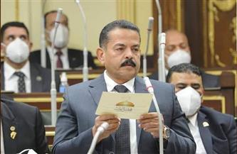 برلماني-مبادرة-الرئيس-السيسي-لتطوير-القرى-ستغير-وجه-مصر-خلال--سنوات