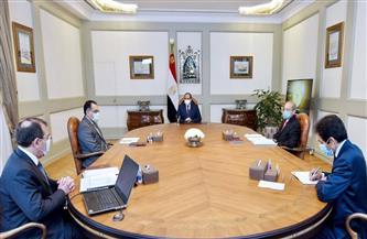 الرئيس السيسي يوجه بتطوير جهود الدولة لتحقيق الاستفادة المثلى من موارد البترول والغاز
