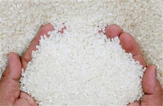 """""""صناعة الحبوب"""" تعلن بدء توريد 30 ألف طن أرز محلي لصالح """"التموين"""""""