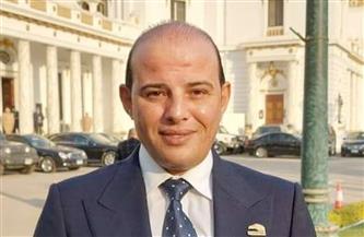 """""""طاقة النواب"""": سنعمل على تنفيذ إستراتيجية الرئيس السيسي بشأن تعظيم موارد مصر النفطية"""