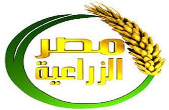 قناة «مصر الزراعية» تستعد لإعادة الانطلاق