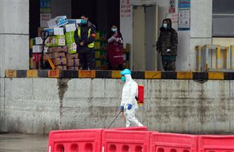 """أخيرا.. فريق منظمة الصحة العالمية يصل """"سوق ووهان"""""""