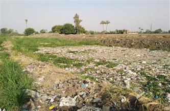 ضمن مبادرة الرئيس للتطوير.. أهالي قرية الصنافين بالشرقية يطالبون بسنترال ووحدة صحية | صور