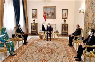 الرئيس السيسي يؤكد مجددا رفض أي عمل أو إجراء يمس بحقوق مصر في مياه النيل