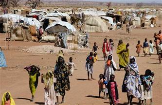 5000 طفل يعيشون في خطر بعد 6 أشهر من الصراع بإثيوبيا