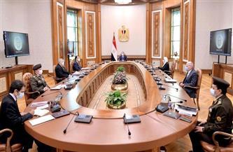 الرئيس السيسي يستعرض الموقف التنفيذي للمشروع القومي لتصنيع وتجميع مشتقات البلازما