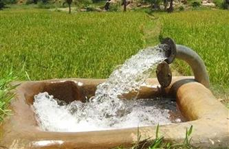 """""""الإحصاء"""": 40.2 مليار متر مكعب كمية المياه المستخدمة في ري المحاصيل الزراعية 2019"""