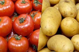 انخفاض أسعار الطماطم وارتفاع البطاطس.. تعرف على أسعار الفاكهة والخضراوات الإثنين 4-1-2021