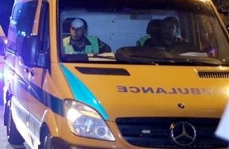 إصابة سيدة حامل ووالدها خلال تدخلهما لفض مشاجرة بالأسلحة النارية في المحلة
