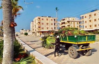محافظ كفر الشيخ: رفع 2081 طن مخلفات وحملات نظافة مكثفة بالمراكز والمدن|صور