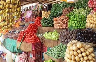 أسعار الفاكهة والخضراوات اليوم الثلاثاء 23 فبراير 2021