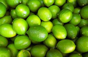 """""""شعبة الخضر"""" توضح أسباب الارتفاع الكبير بأسعار الليمون"""