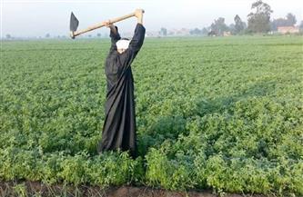 تعرف على حقيقة تحميل المزارعين تكاليف تأهيل وتبطين الترع