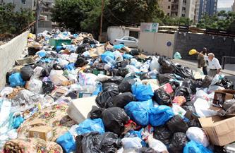 ضبط 29 طن بلاستيك ونفايات خطرة في حملة بالقليوبية