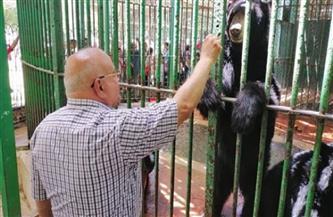 رئيس حديقة الحيوان لـ«بوابة الأهرام»: استقبلنا 4 آلاف زائر اليوم.. وتطبيق كامل الإجراءات الاحترازية