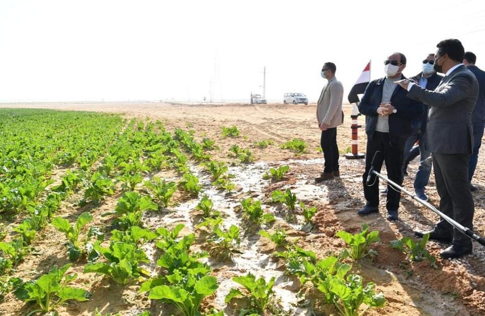 أبرز المعلومات عن مشروع مستقبل مصر للإنتاج الزراعي