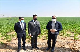 الرئيس السيسي يتفقد مشروع استصلاح 500 ألف فدان على محور الضبعة   صور