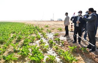 المتحدث الرئاسي ينشر فيديو تفقد الرئيس السيسي لمشروع مستقبل مصر للإنتاج الزراعي