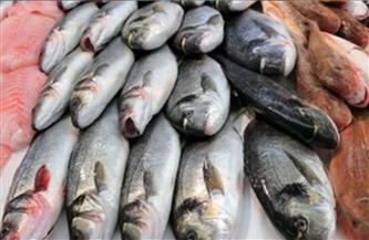 ارتفاع البلطي وقشر البياض.. أسعار السمك اليوم  السبت 9 يناير2021