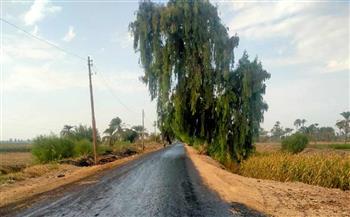 محافظ-أسيوط-استكمال-أعمال-رصف-طريق-ساو-أمشول-بمركز-ديروط-|-صور