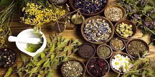 -أعشاب-ونباتات-طبيعية-تستخدم-كمضاد-حيوي-طبيعي-لتسكين-الآلام-ونتائجها-مذهلة-